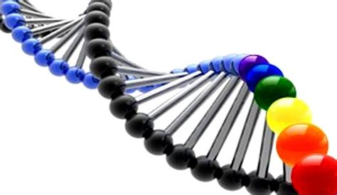 A gay gene is homosexuality inherited assault on jpg 712x414